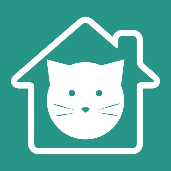 happy indoor cat. best for your indoor cat